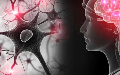 Feeling Groggy? You May Need to Detox Your Brain